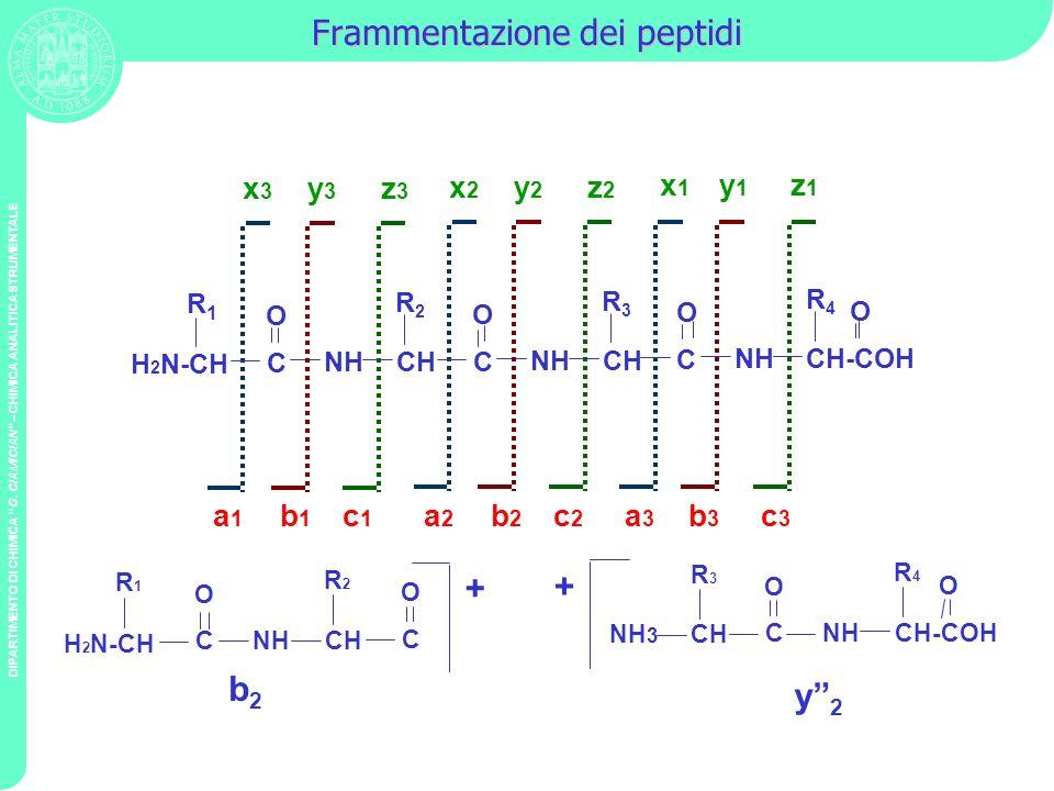 Frammentazione dei peptidi