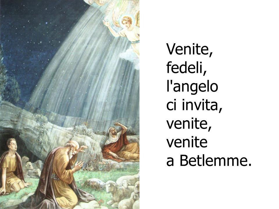 Venite, fedeli, l angelo ci invita, venite, venite a Betlemme.