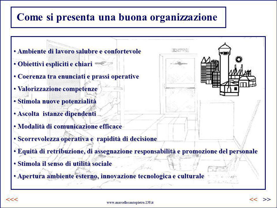 Come si presenta una buona organizzazione