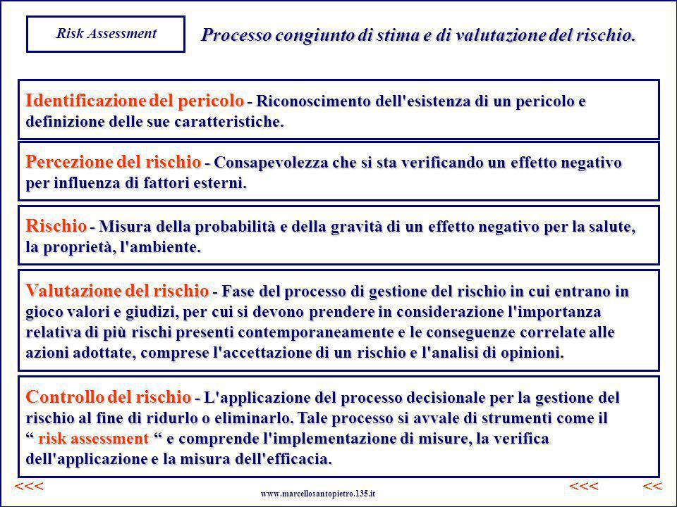 Processo congiunto di stima e di valutazione del rischio.