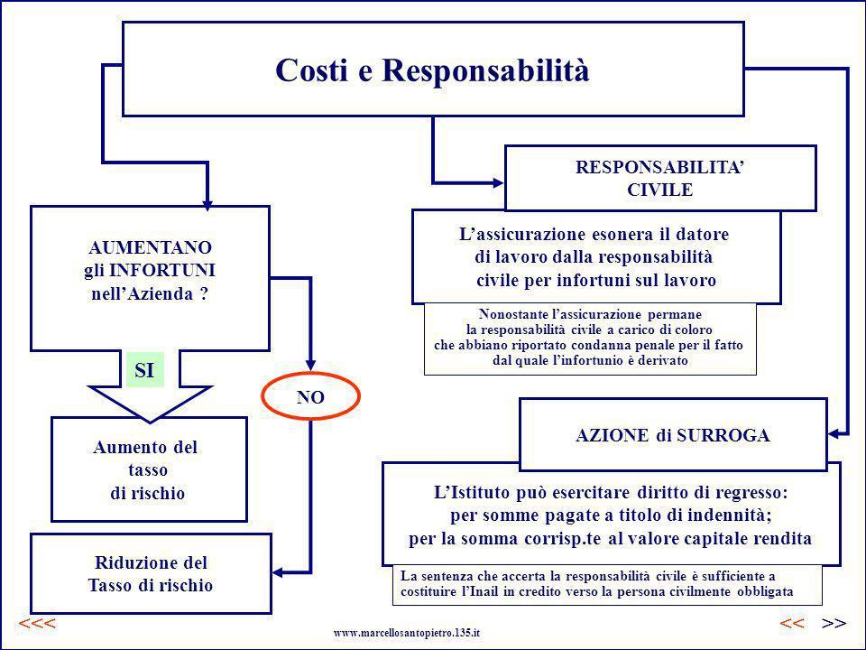 Costi e Responsabilità