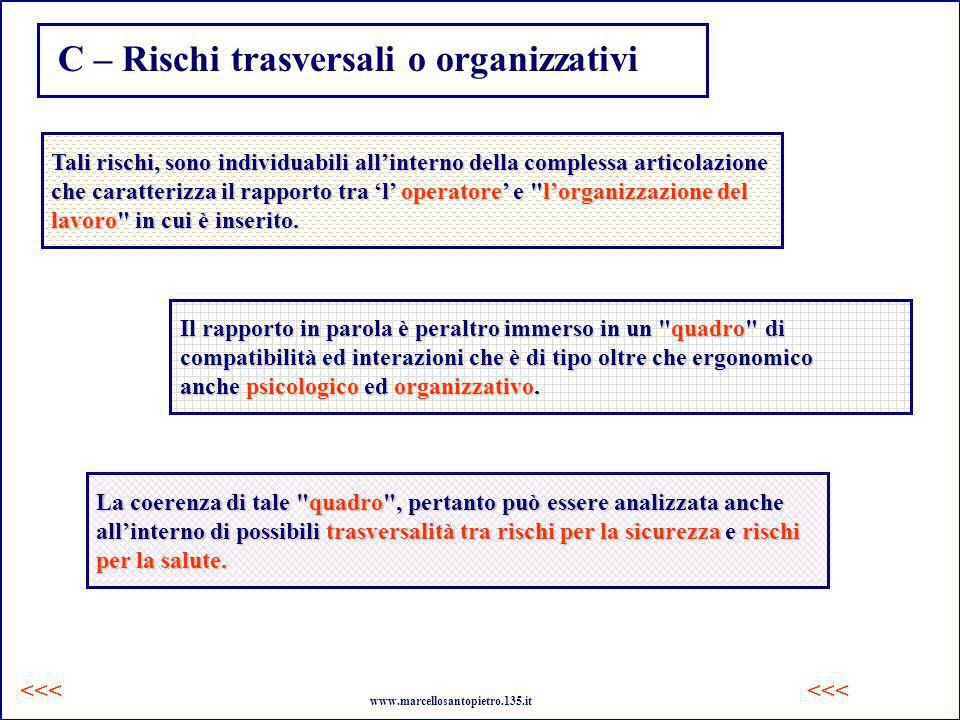 C – Rischi trasversali o organizzativi