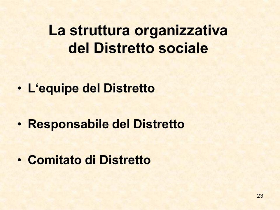 La struttura organizzativa del Distretto sociale