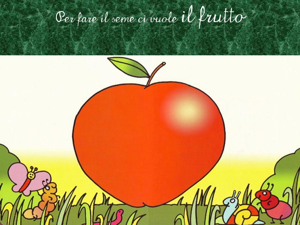 Per fare il seme ci vuole il frutto