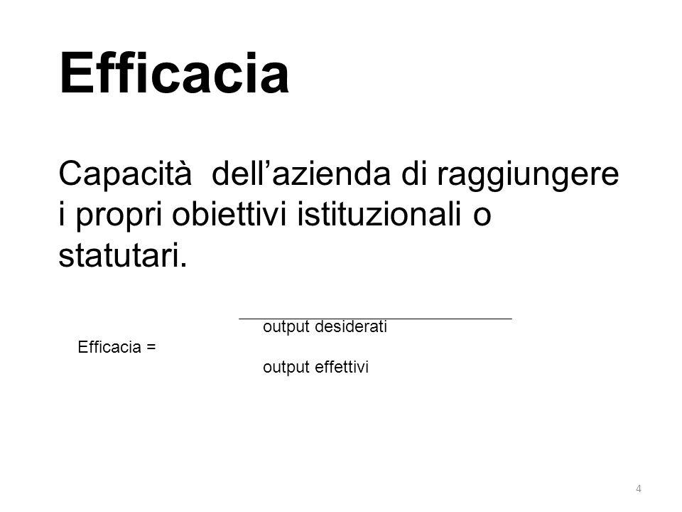Efficacia Capacità dell'azienda di raggiungere i propri obiettivi istituzionali o statutari. output desiderati.