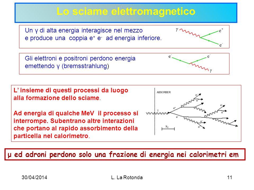 Lo sciame elettromagnetico
