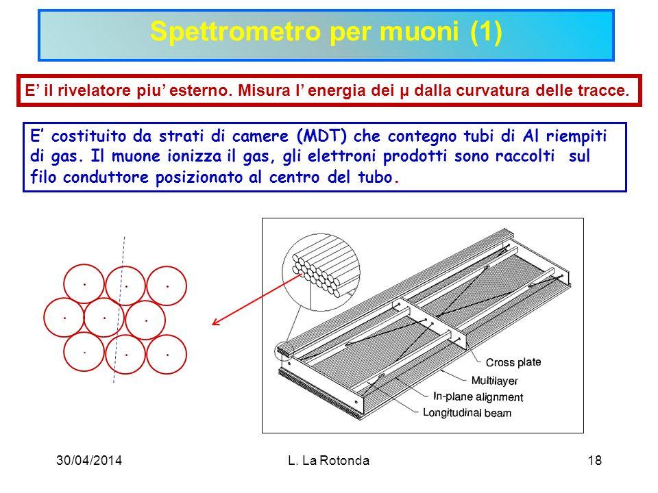 Spettrometro per muoni (1)