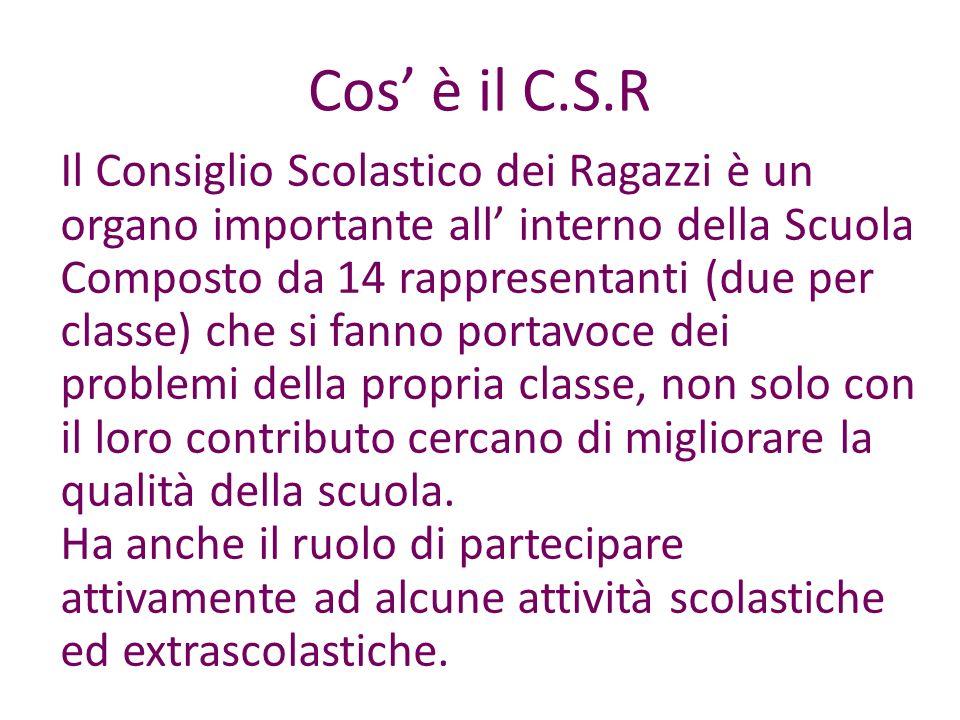 Cos' è il C.S.R