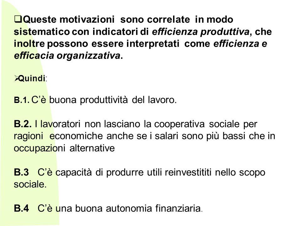 B.3 C'è capacità di produrre utili reinvestititi nello scopo sociale.