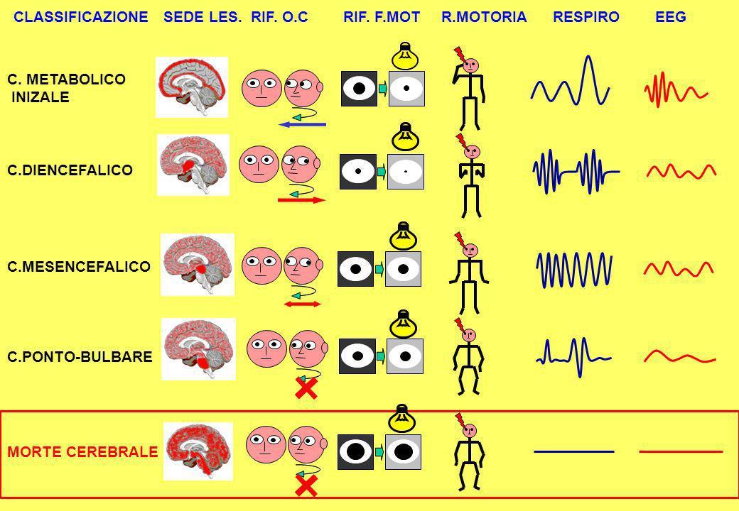 CLASSIFICAZIONE SEDE LES. RIF. O.C RIF. F.MOT R.MOTORIA RESPIRO EEG