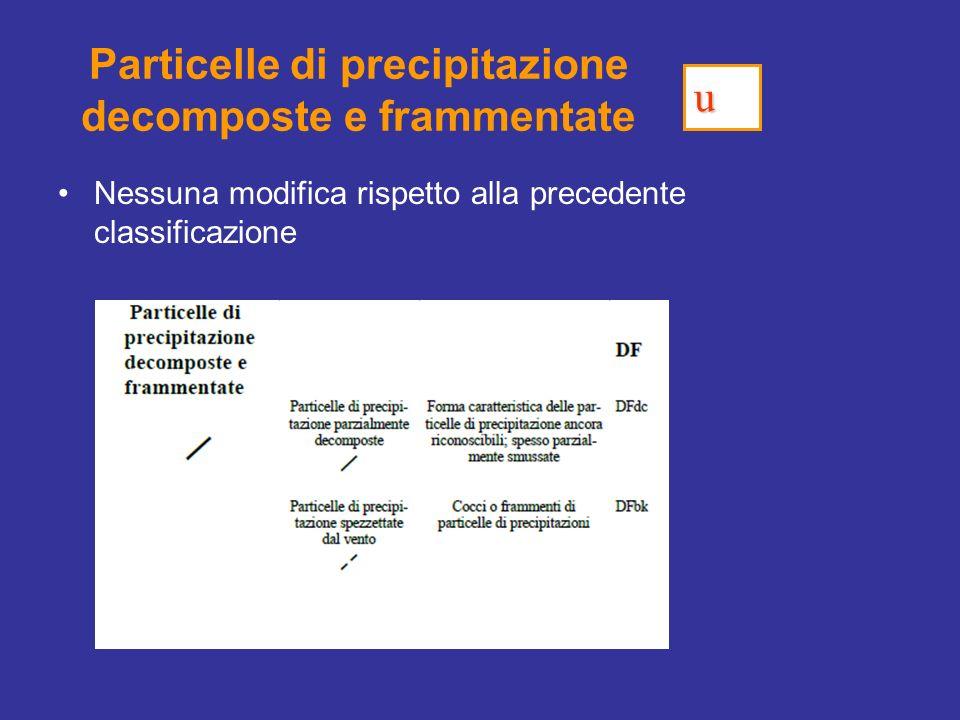 Particelle di precipitazione decomposte e frammentate