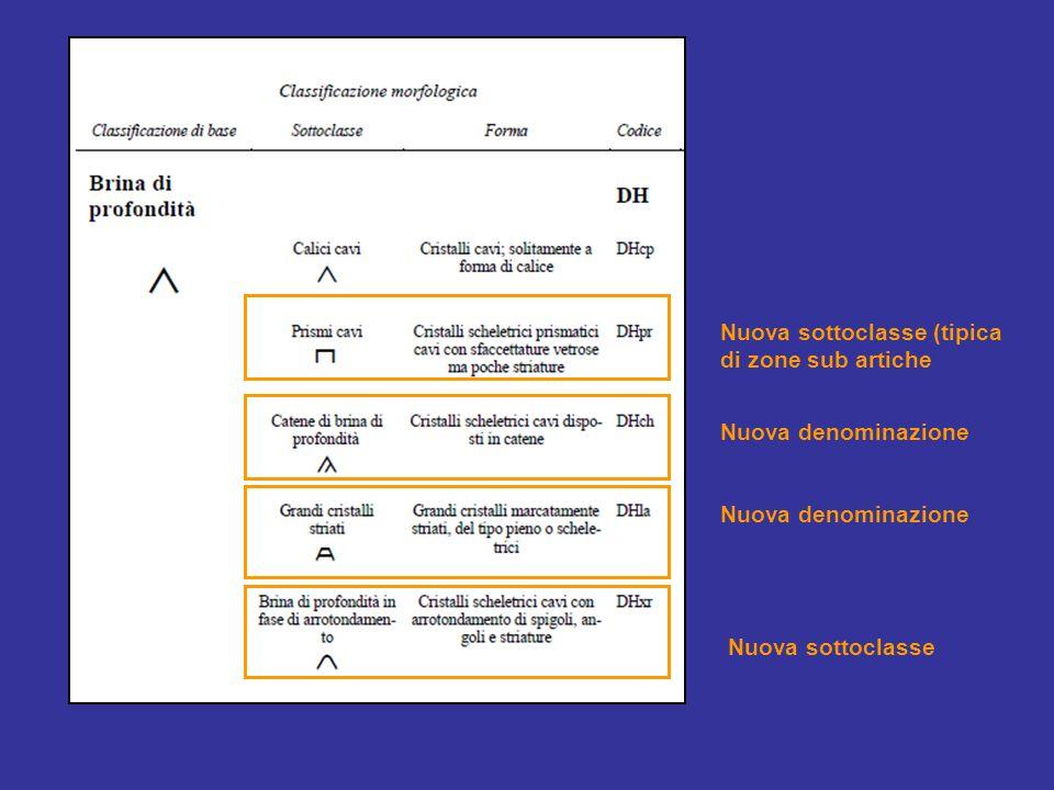Nuova sottoclasse (tipica di zone sub artiche
