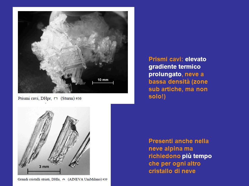 Prismi cavi: elevato gradiente termico prolungato, neve a bassa densità (zone sub artiche, ma non solo!)