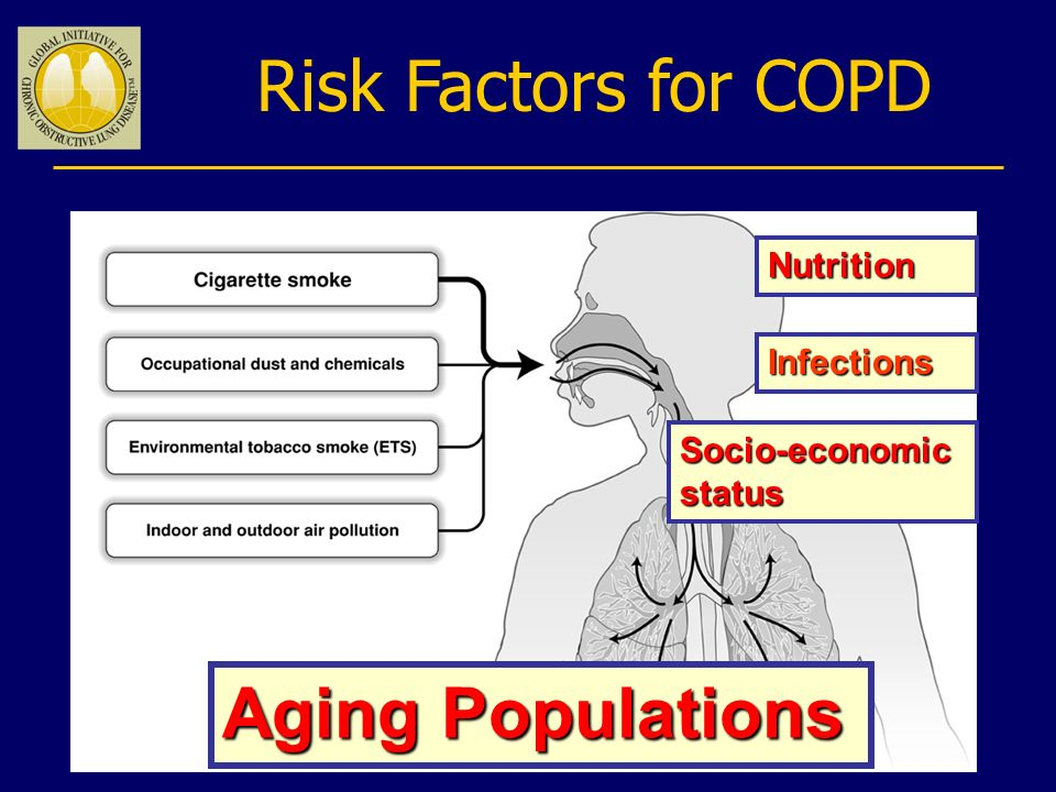 Risk Factors for COPD Aging Populations Nutrition Infections