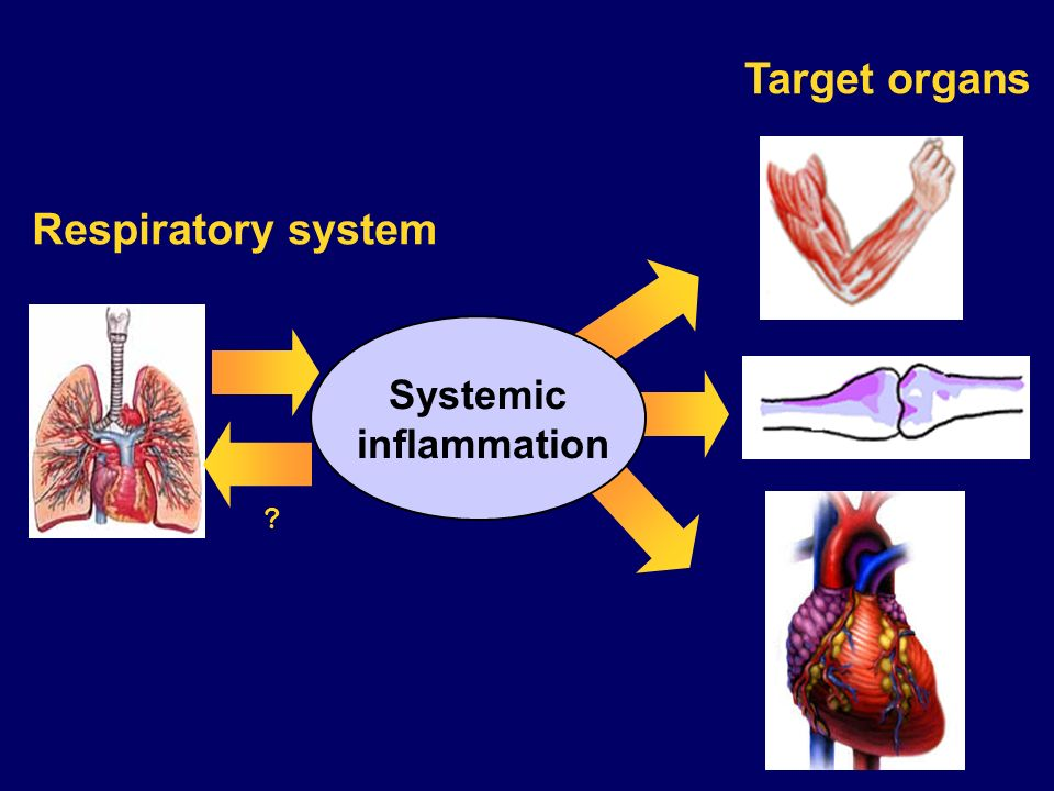Target organs Respiratory system Systemic inflammation