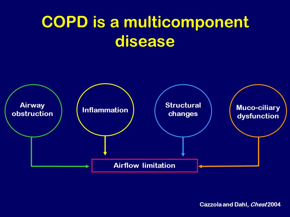 COPD is a multicomponent disease