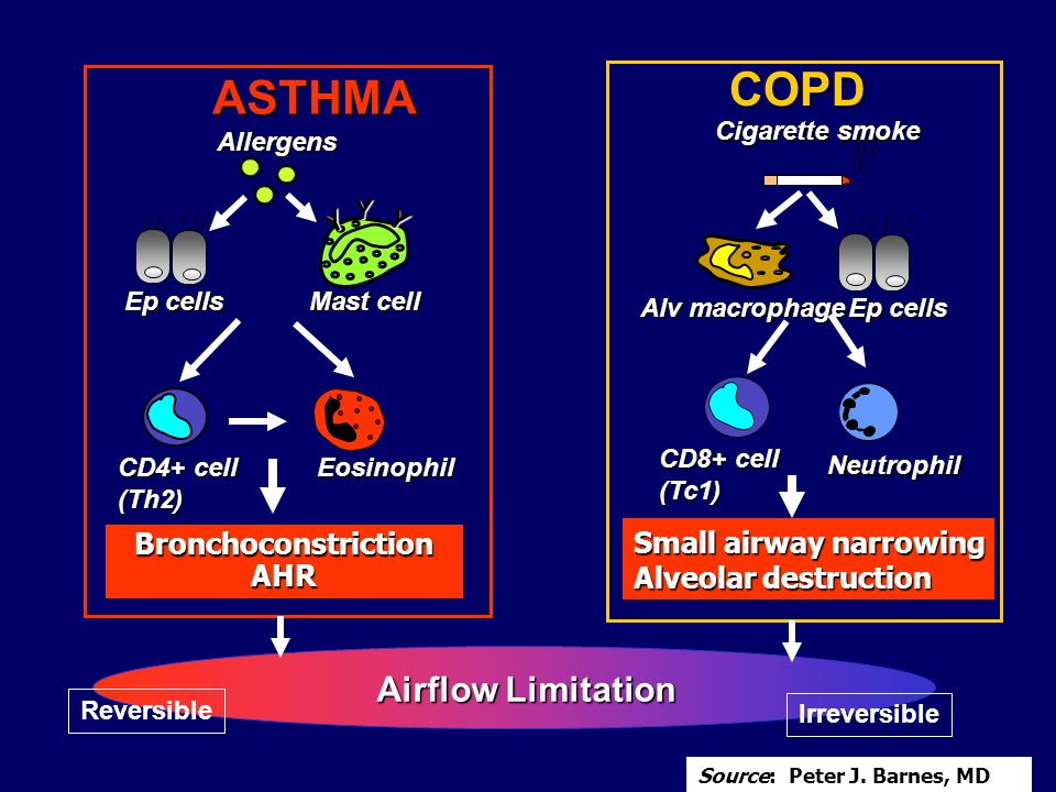 COPD ASTHMA Airflow Limitation Small airway narrowing