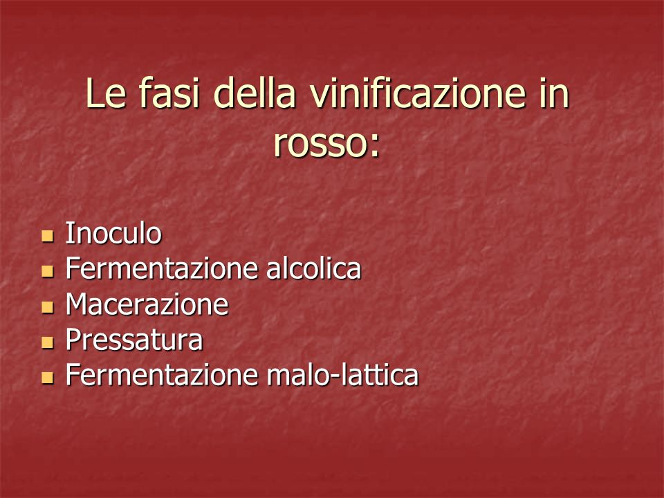 Le fasi della vinificazione in rosso: