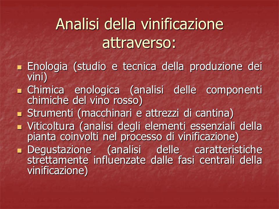 Analisi della vinificazione attraverso: