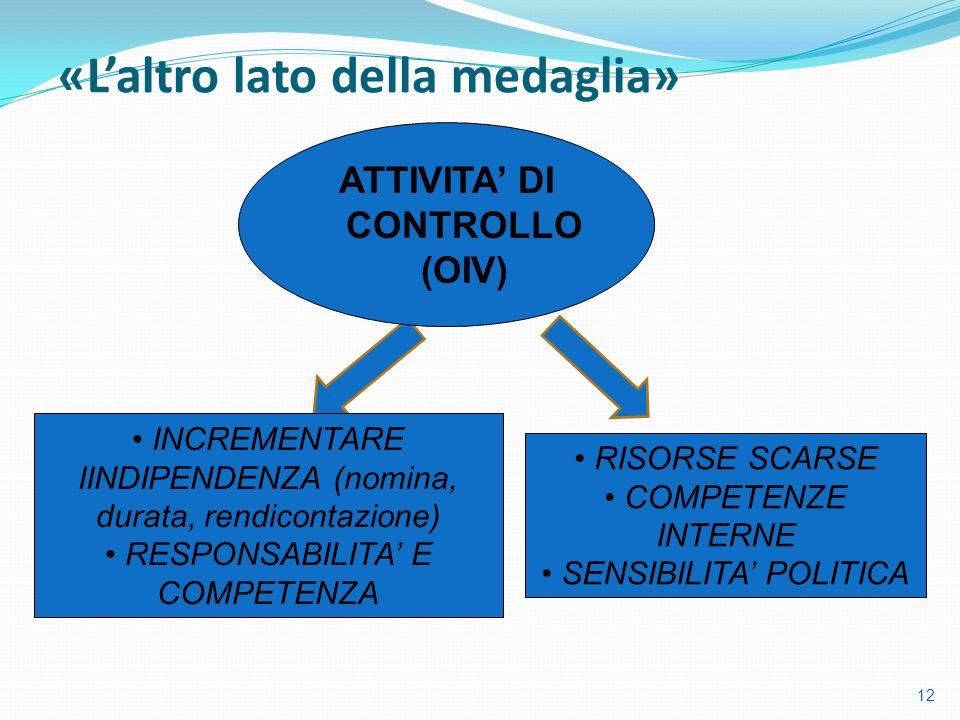 ATTIVITA' DI CONTROLLO (OIV)