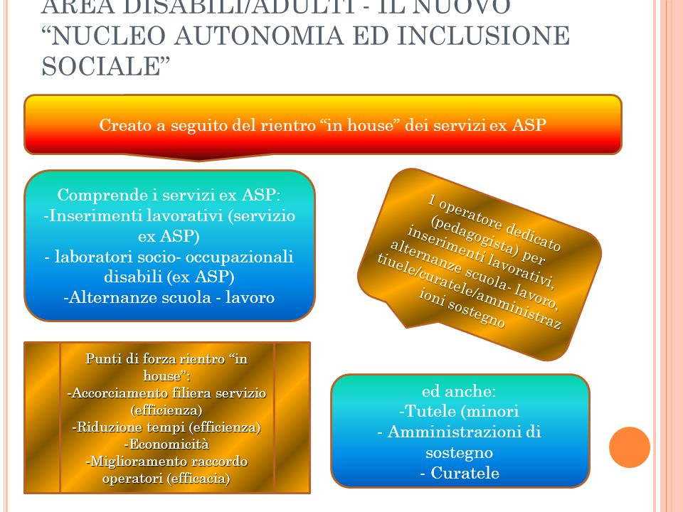 AREA DISABILI/ADULTI - IL NUOVO NUCLEO AUTONOMIA ED INCLUSIONE SOCIALE