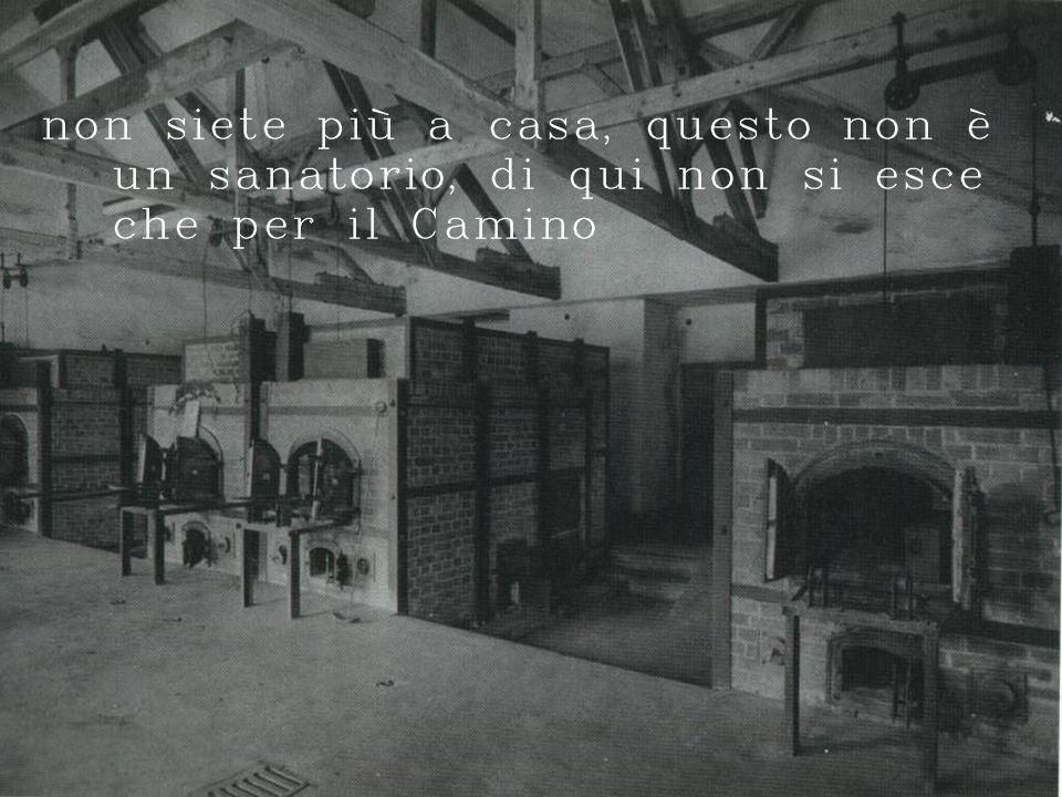 non siete più a casa, questo non è un sanatorio, di qui non si esce che per il Camino
