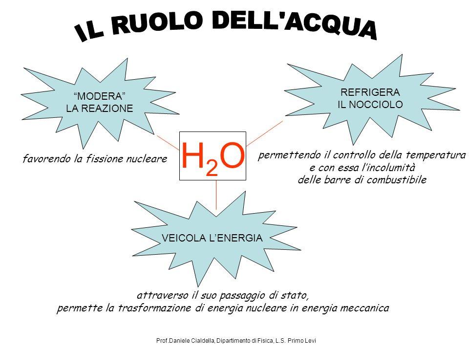 H2O IL RUOLO DELL ACQUA REFRIGERA MODERA IL NOCCIOLO LA REAZIONE