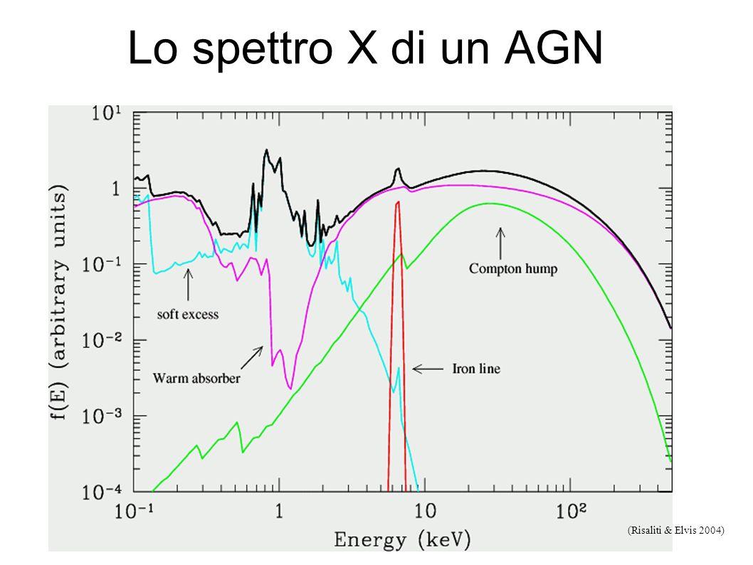 Lo spettro X di un AGN (Risaliti & Elvis 2004)