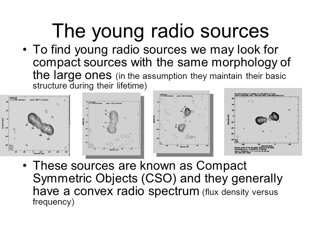 The young radio sources