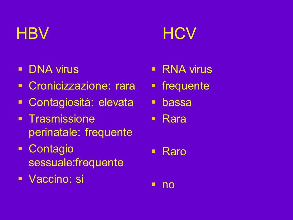 HBV HCV DNA virus Cronicizzazione: rara Contagiosità: elevata
