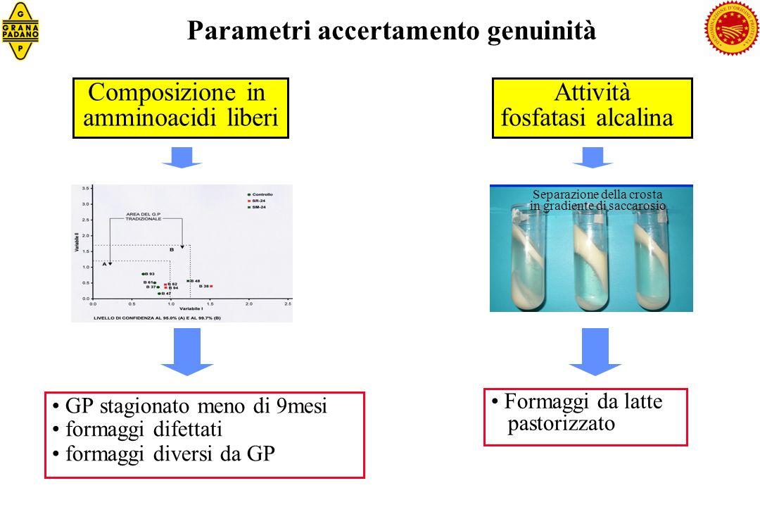 GP stagionato meno di 9mesi formaggi difettati formaggi diversi da GP