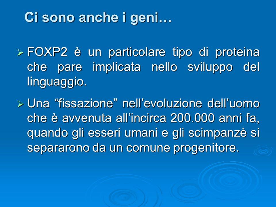 Ci sono anche i geni…FOXP2 è un particolare tipo di proteina che pare implicata nello sviluppo del linguaggio.