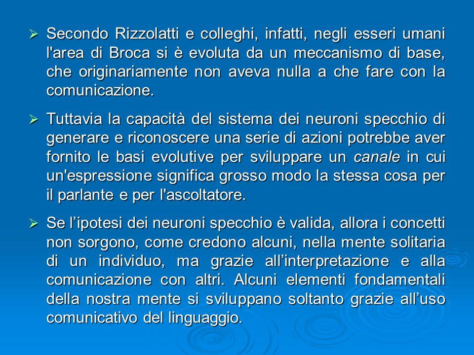 Secondo Rizzolatti e colleghi, infatti, negli esseri umani l area di Broca si è evoluta da un meccanismo di base, che originariamente non aveva nulla a che fare con la comunicazione.
