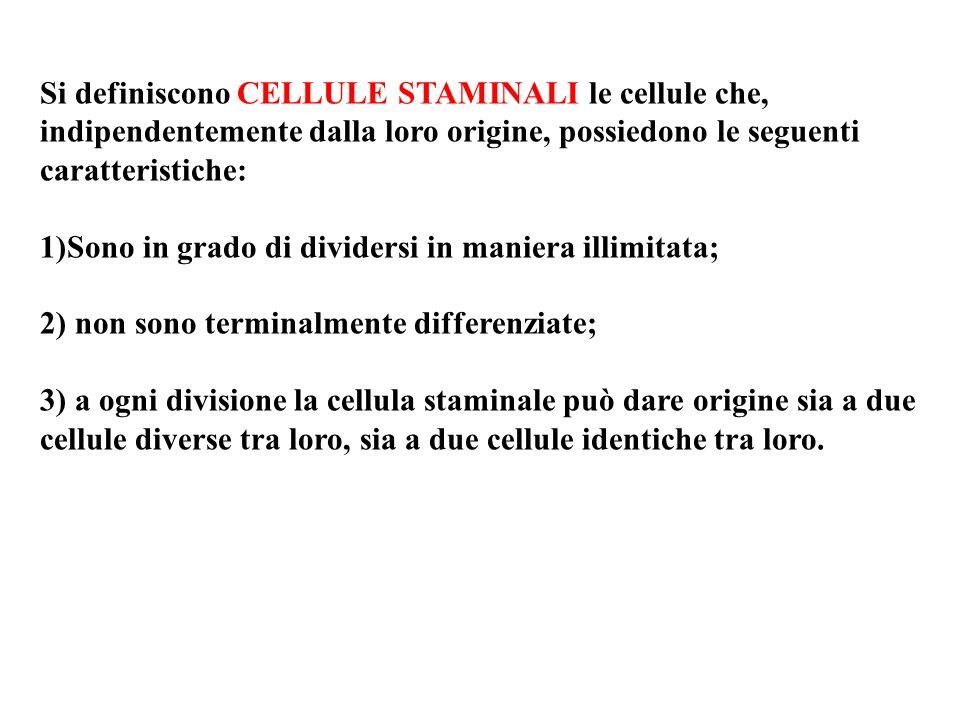 Si definiscono CELLULE STAMINALI le cellule che, indipendentemente dalla loro origine, possiedono le seguenti caratteristiche: