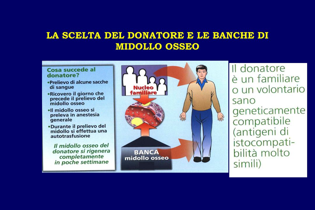 LA SCELTA DEL DONATORE E LE BANCHE DI MIDOLLO OSSEO
