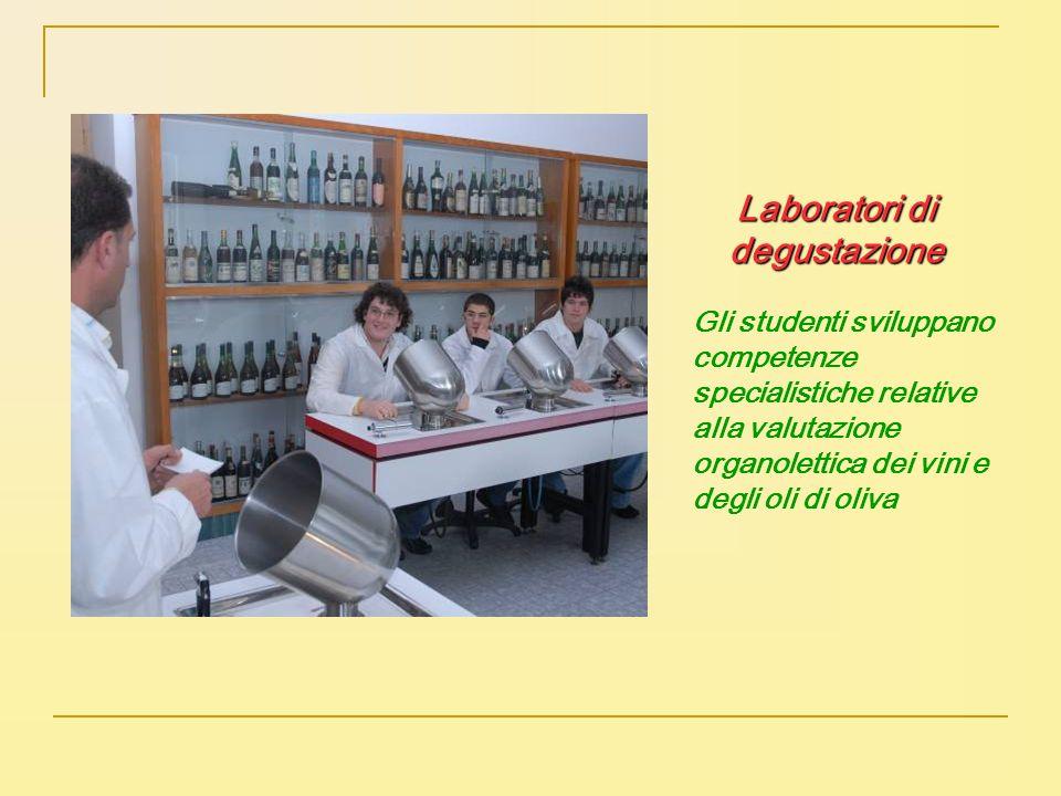 Laboratori di degustazione