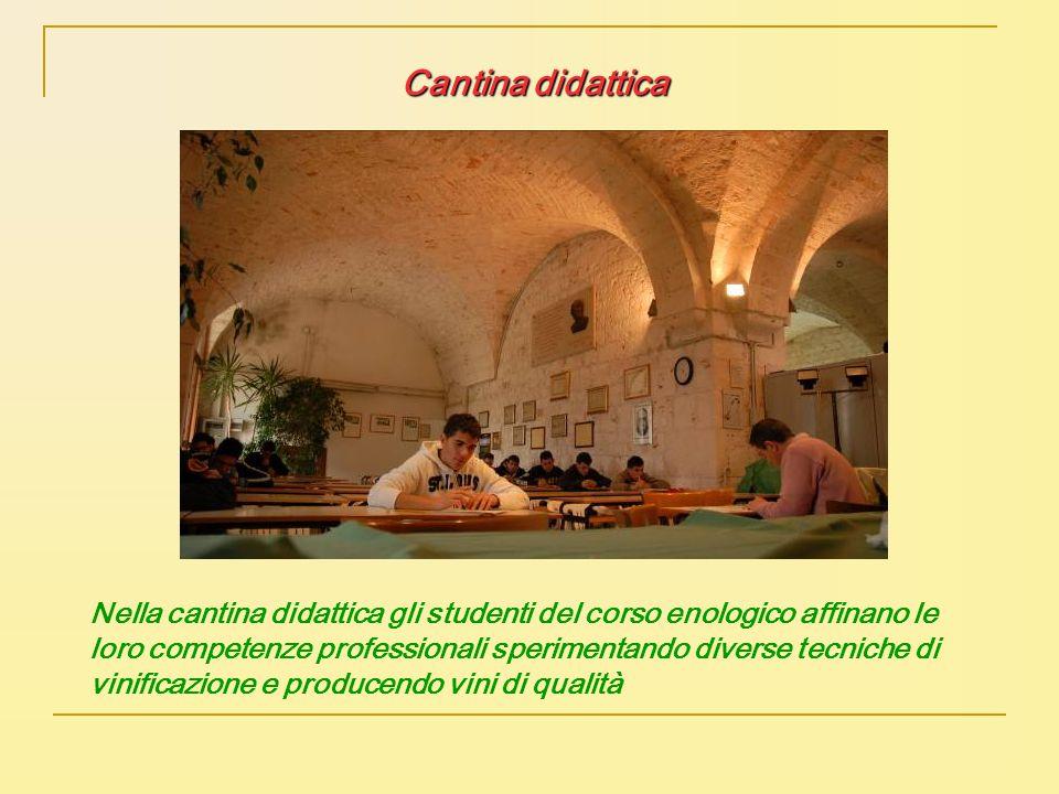 Cantina didattica