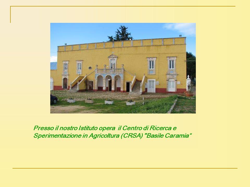 Presso il nostro Istituto opera il Centro di Ricerca e Sperimentazione in Agricoltura (CRSA) Basile Caramia