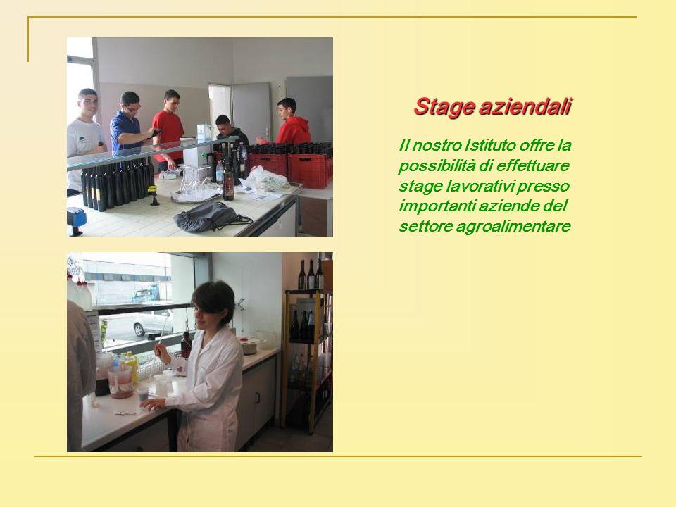 Stage aziendali Il nostro Istituto offre la possibilità di effettuare stage lavorativi presso importanti aziende del settore agroalimentare.
