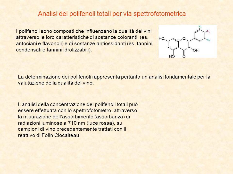Analisi dei polifenoli totali per via spettrofotometrica