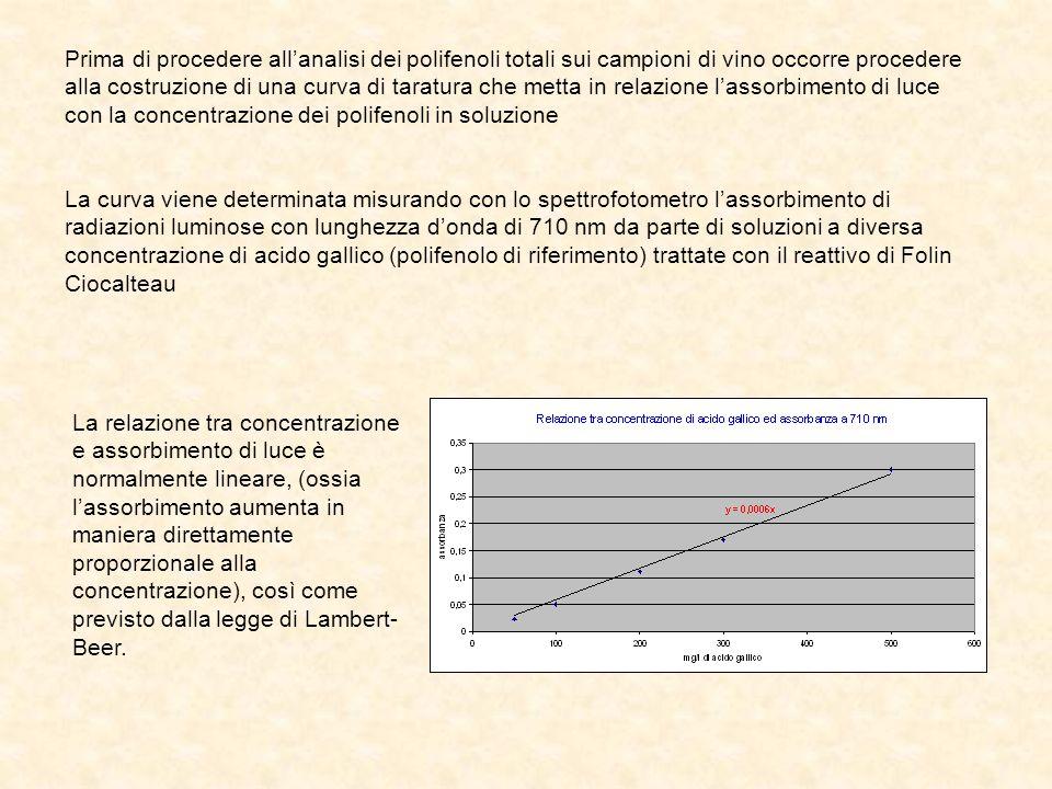 Prima di procedere all'analisi dei polifenoli totali sui campioni di vino occorre procedere alla costruzione di una curva di taratura che metta in relazione l'assorbimento di luce con la concentrazione dei polifenoli in soluzione