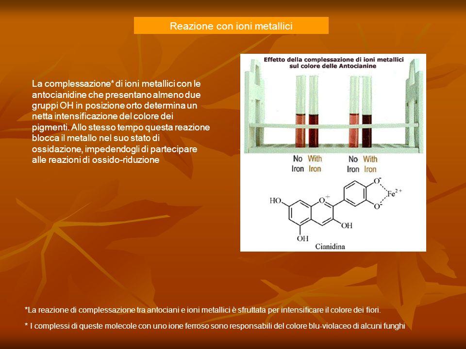 Reazione con ioni metallici