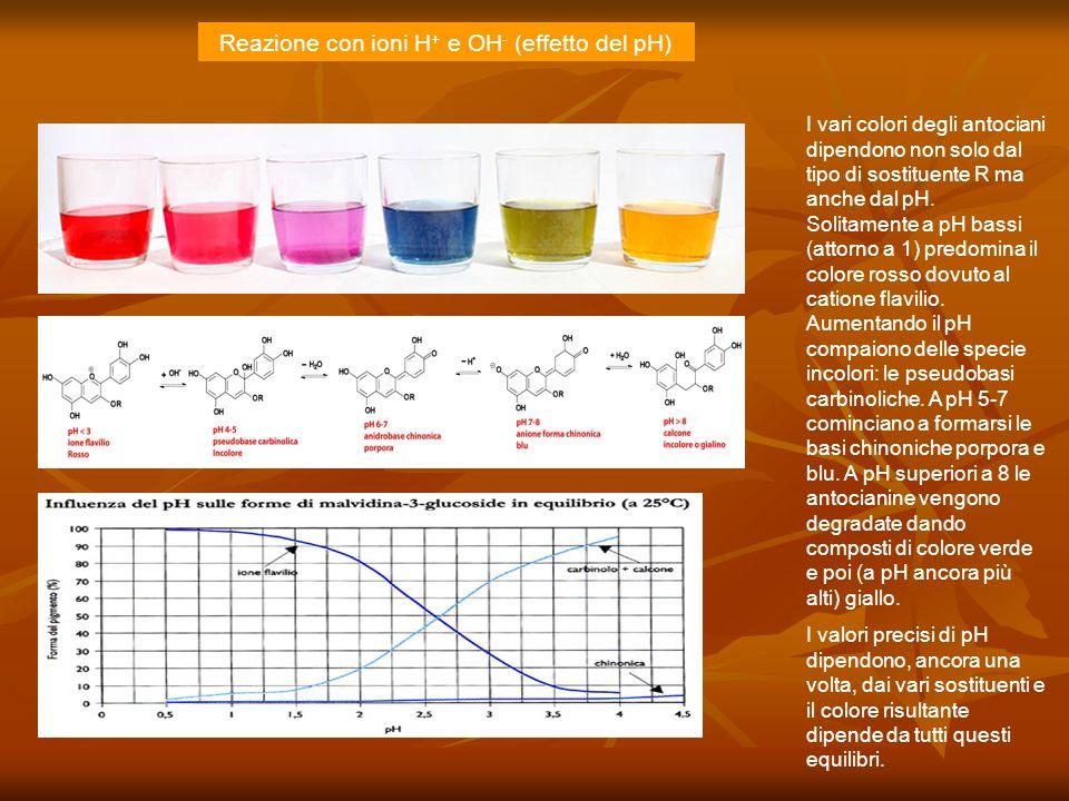 Reazione con ioni H+ e OH- (effetto del pH)