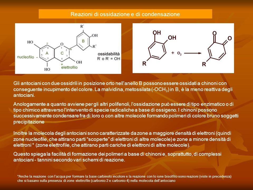 Reazioni di ossidazione e di condensazione