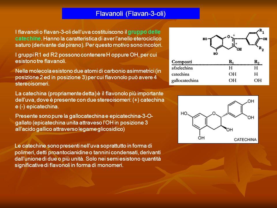 Flavanoli (Flavan-3-oli)