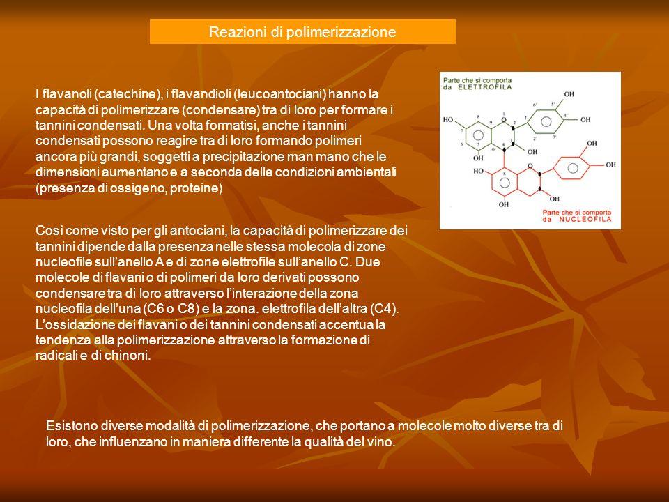 Reazioni di polimerizzazione