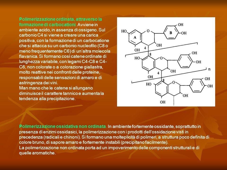 Polimerizzazione ordinata, attraverso la formazione di carbocationi