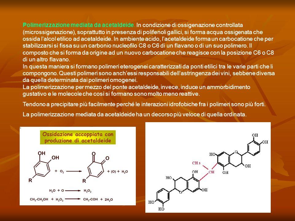 Polimerizzazione mediata da acetaldeide