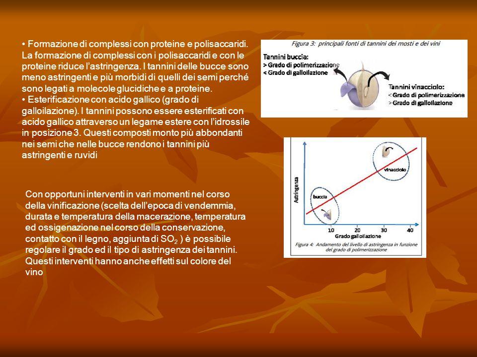 Formazione di complessi con proteine e polisaccaridi