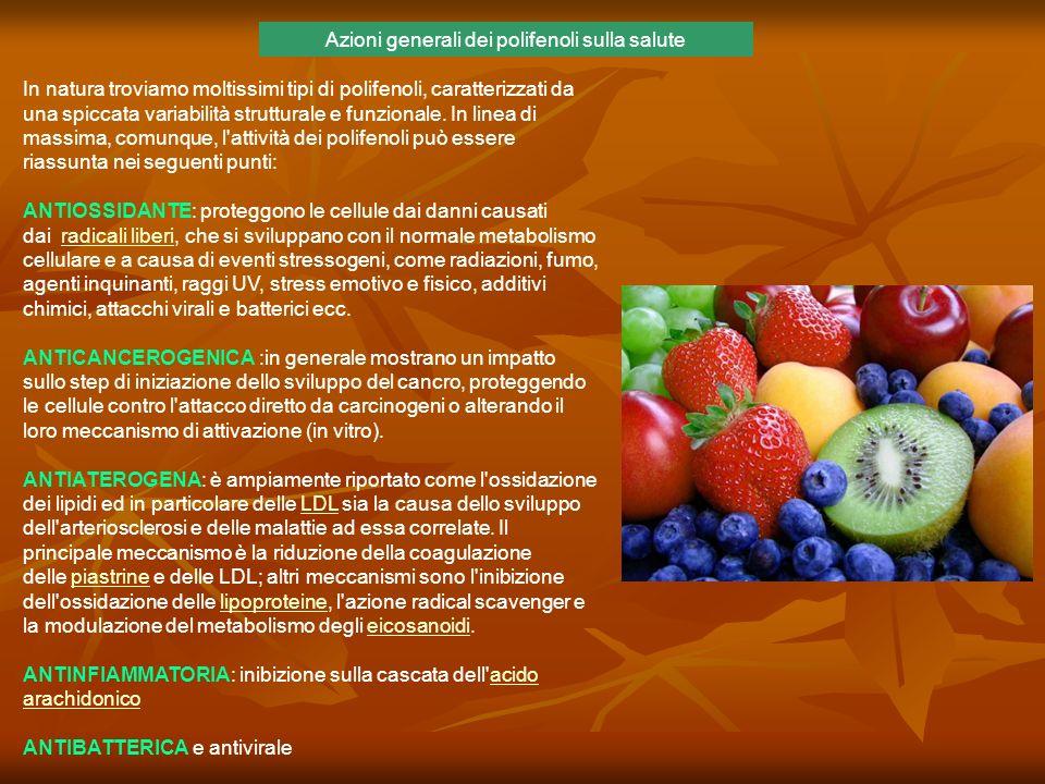 Azioni generali dei polifenoli sulla salute